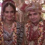 karan-mehra-nisha-rawal-wedding-1