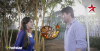 Sooraj and Sandhya decide to give one baby to Bulbul in Diya Aur Baati Hum